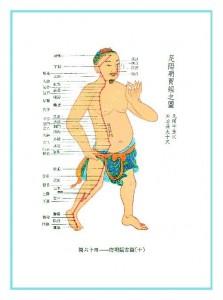 meridyen-mide